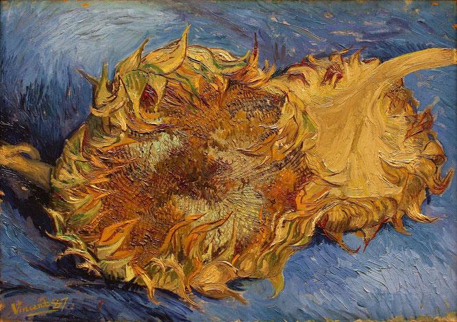 フィンセント・ファン・ゴッホ「ひまわり」(F375)(1887年)。メトロポリタン美術館所蔵。