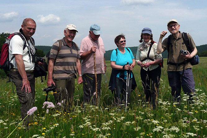 """Im Rahmen des """"Langen Tags der Natur"""" 2015 lernten die Teilnehmer während einer Wanderung des NABU Ilmkreis durch Bergwiesen bei Gehlberg viele spannende Kräuter und ihre Anwendung kennen. Foto: NABU Ilmkreis"""