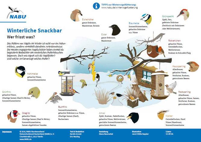 Vogelfütterung im Winter - NABU Ravensburg