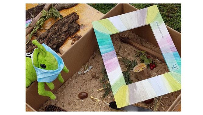 Artenvielfalt in der Box
