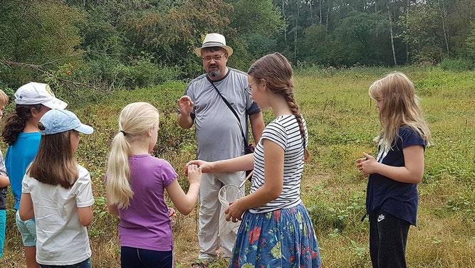 NAJU-Kinder erleben Artenvielfalt im Friedrich-Spee-Biotop