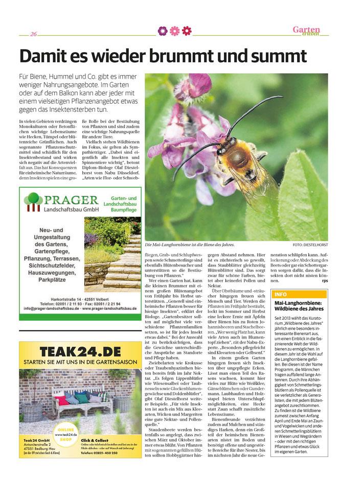 26.03.2021 - RP - Bienengärten erleben - Seite 2