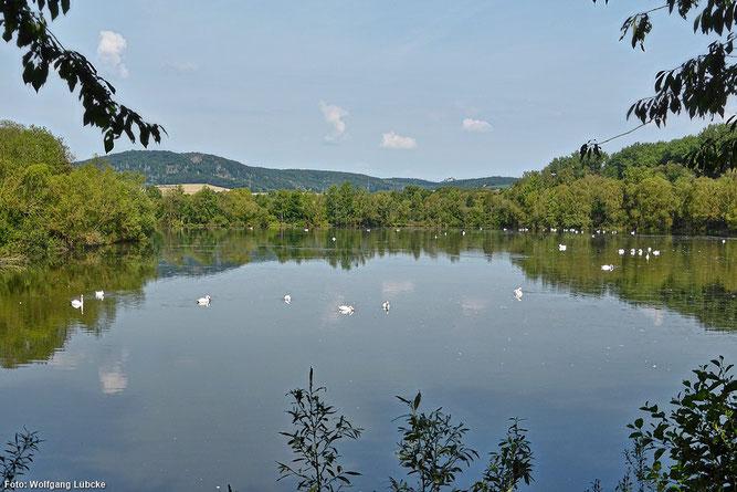"""Naturschutzgebiet """"Schwimmkaute bei Mehlen"""" von der Beobachtungshütte aus (Foto: Wolfgang Lübcke)"""