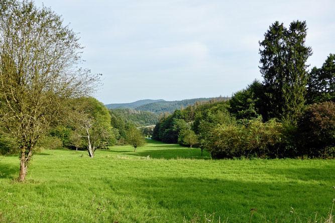 Landschaftlich reizvoll - das Appenrod mit den Wildunger Bergen im Hintergrund (Foto: Wolfgang Lübcke)