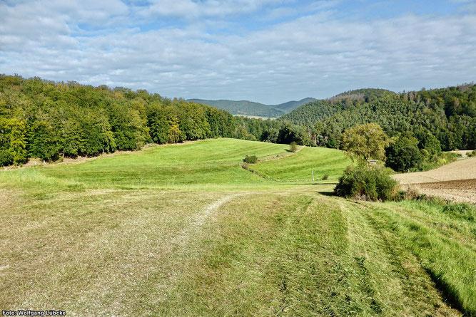Blick ins Kesselbachtal in Richtung Kleinern, im Hintergrund die Nationalpark-Berge (Foto: Wolfgang Lübcke)