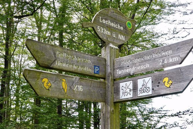 Wegweiser an der Locheiche (Foto: Wolfgang Lübcke)
