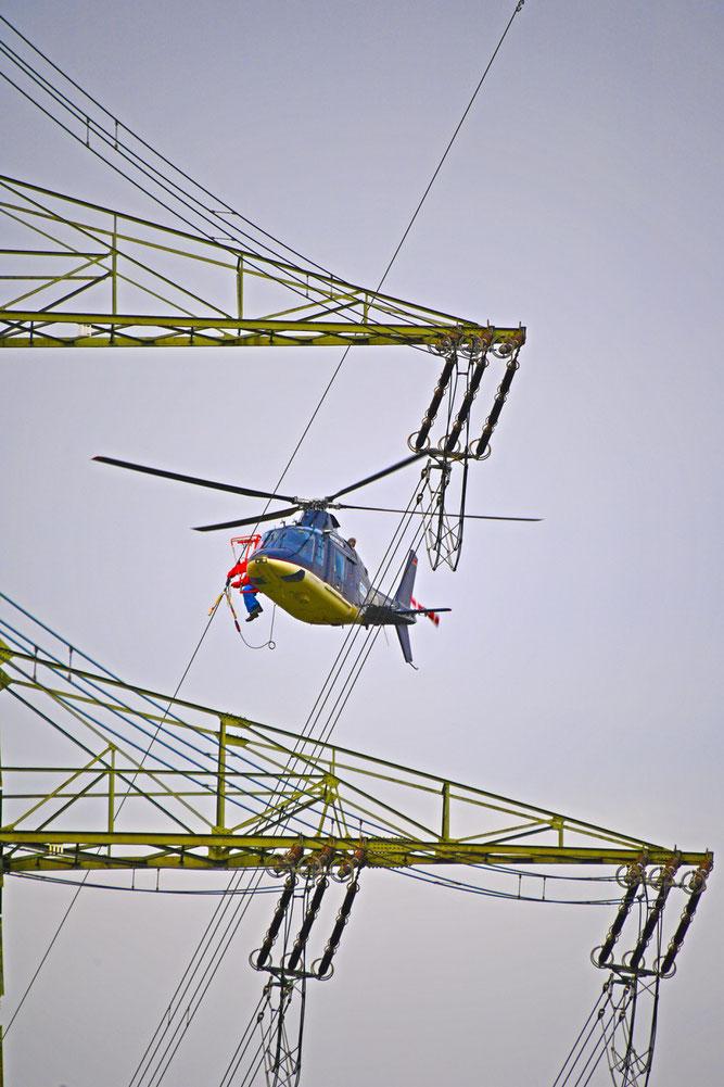 Eine Spezialfirma installierte die Vogelmarker per Hubschrauber.