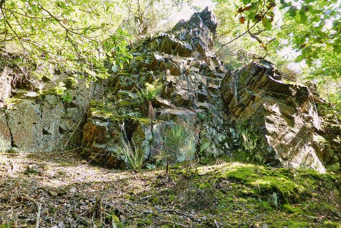 """Klausberg"" - Tonschiefer-Felsen mit umgebendem Traubeneichen (Foto: Wolfgang Lübcke)"