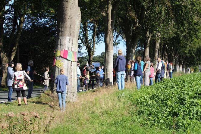 Menschenkette an der Buchenreihe in Hockensberg (Iserloyer Straße, Kreisstraße 237)