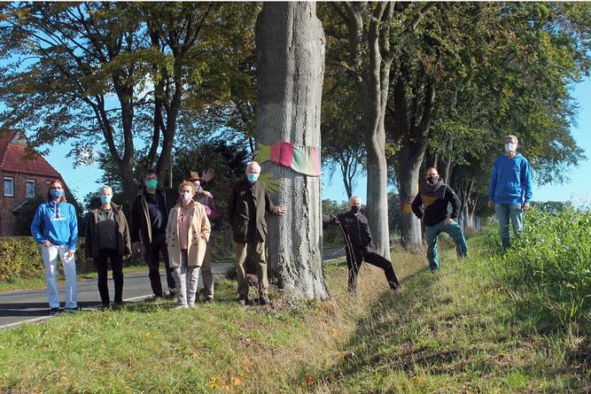 Pressetermin zur Rettung der Buchenreihe in Hockensberg. - Foto: privat