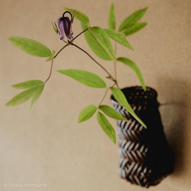 網代編みの掛け花籠に鉄線の花