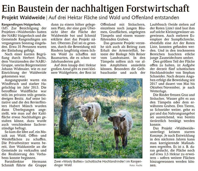 Schwarzwälder Bote, 30.09.2019