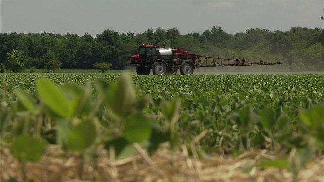 Die Saat der Gier – Wie Bayer mit Monsanto die Landwirtschaft verändern will