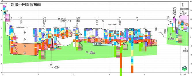 図7 武蔵新城-等々力緑地-久が原を通る断面図