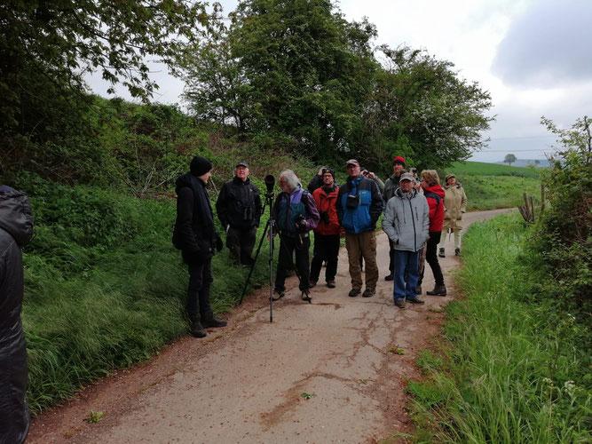 15 Teilnehmer nahmen an der Ornithologischen Wanderung durch das Mühlenbachtal teil. Foto: Uwe Wedegärtner