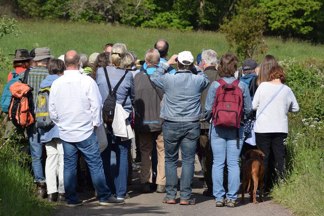 Von der Flora angefangen  über geologische Besonderheiten und ornithologischen Beobachtungen,  war diese Exkursion  ein Erlebnis für alle Teilnehmer. Foto: Marion Zöller