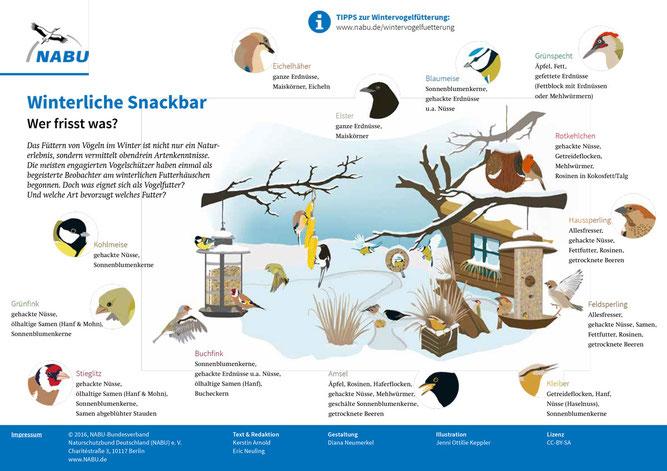 NABU Winterliche Snackbar, Wer frißt was? Vogelfütterung im Winter