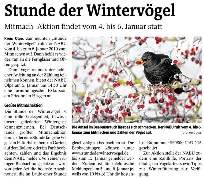Westfalenpost, 29.12.2018