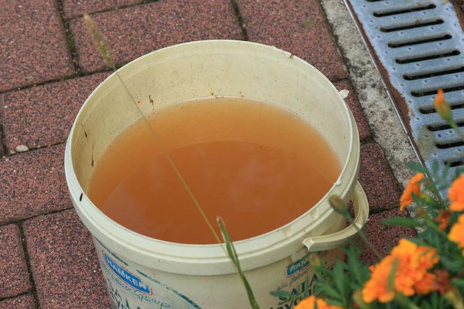 Grundwasser in Marl-Hamm