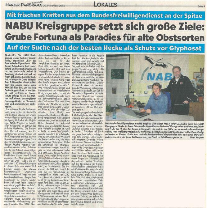 Presseartikel Harzer Panorama vom 20. November 2016