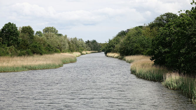 Blick vom Breitling in den Moorgraben zum Radelsee