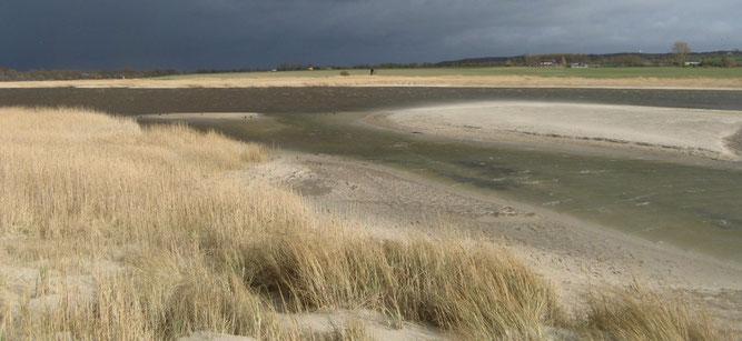 Sandufer und Inseln im Riedensee