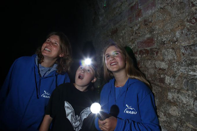 Fledermausbeobachtung bei der Batnight. - Foto: NABU/B. Schaller