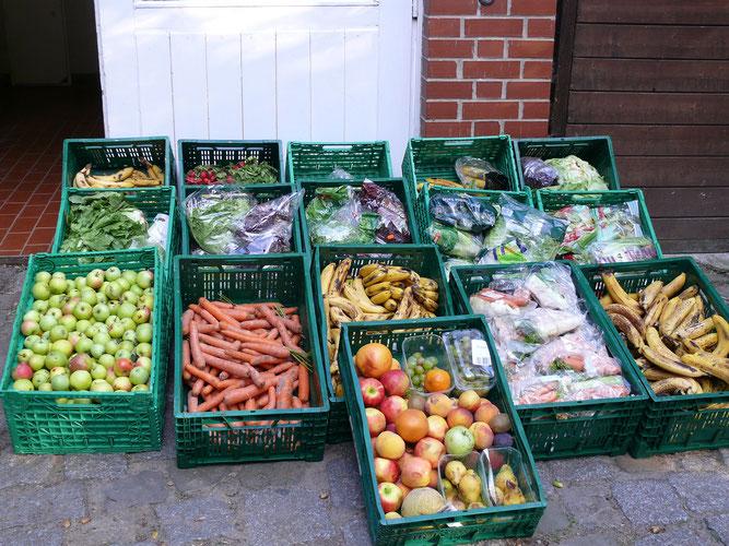Salat, Obst und Gemüse für ca. 12 Tage