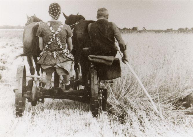 Wer alte Fotos hat, kann sich melden bei Siegfried Janke (04261/83745 oder Anette Meyer (04263/911204), Foto: Archiv des Heimatvereins Scheeßel