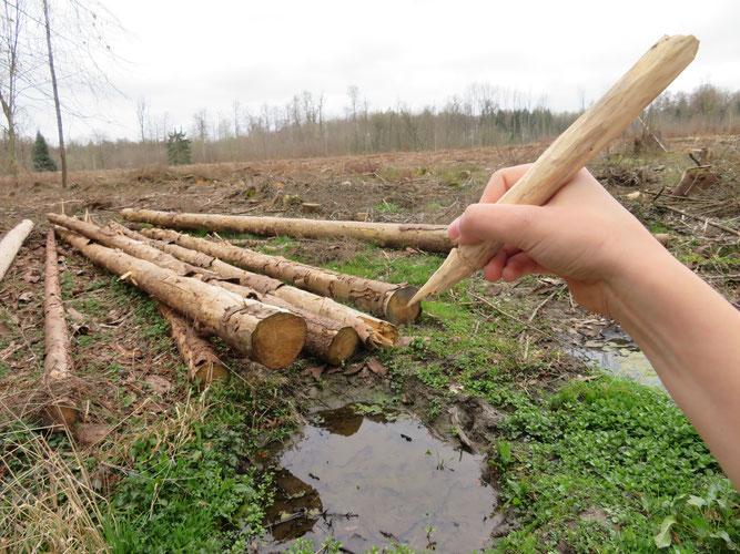 Die Abholzung der Wälder lässt neue Schätze entstehen - dank meines Schnitzmessers, Lara 8 Jahre
