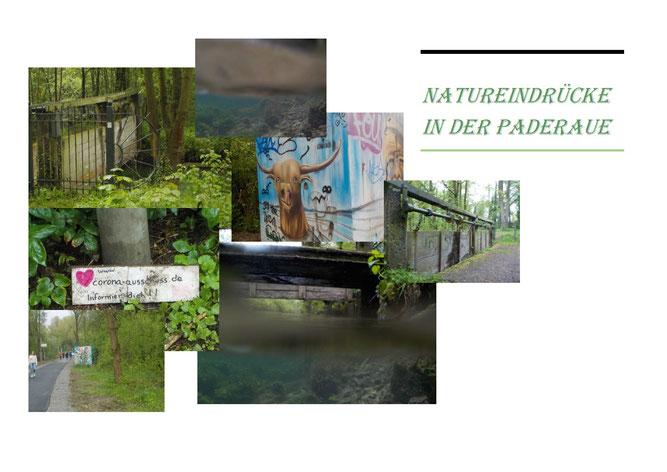 Natureindrücke in der Paderaue, Paula 13 Jahre und Neele 12 Jahre