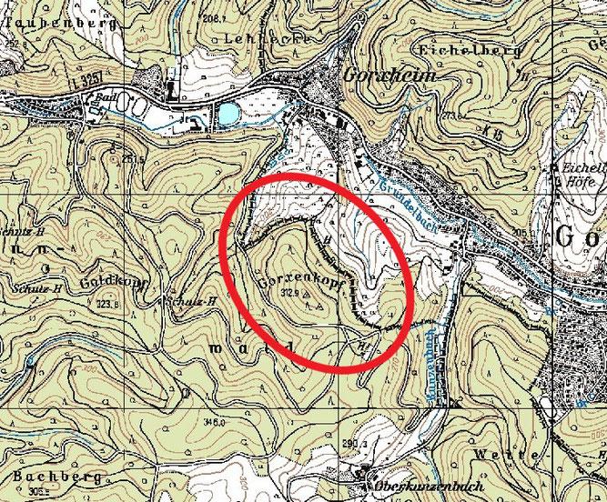 Der Tatort: In dem rot markierten Waldbereich unweit der Landesgrenze wurde das Habichtweibchen im April 2018 beschossen. Darstellung: Peter Schabel