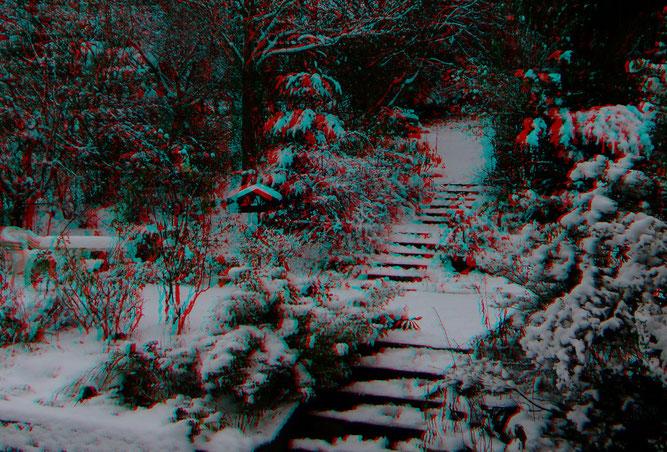 "Mein ""Wintergarten"" am 01.12.2020 - Foto Peter Welker"