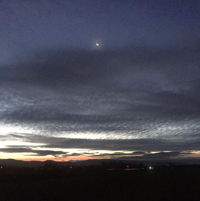 Am Morgenhimmel: Die Barke in der silbernen Flut am 25.10.2010 - Foto Liese L.