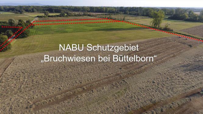 """Foto: NABU Büttelborn (Carsten Ott) """"Südlicher Teil"""" (Blickrichtung: Süden)"""
