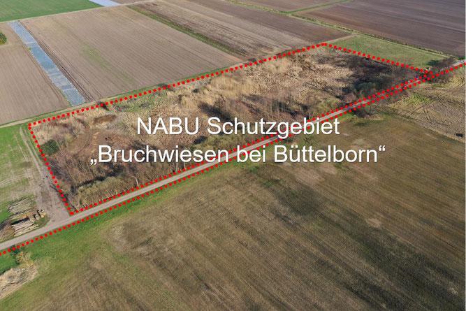 """Foto: NABU Büttelborn (Carsten Ott) """"Östlicher Teil"""" (Blickrichtung: Südost)"""