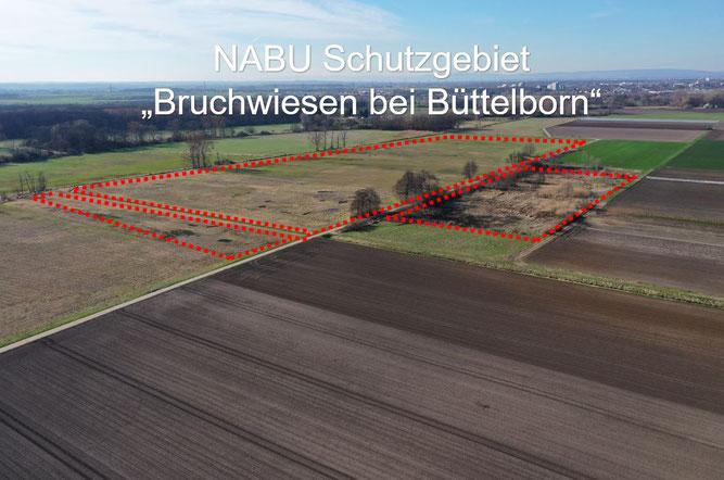"""Foto: NABU Büttelborn (Carten Ott) """"Gesamtes Gebiet"""" (Blickrichtung Nordwest)"""