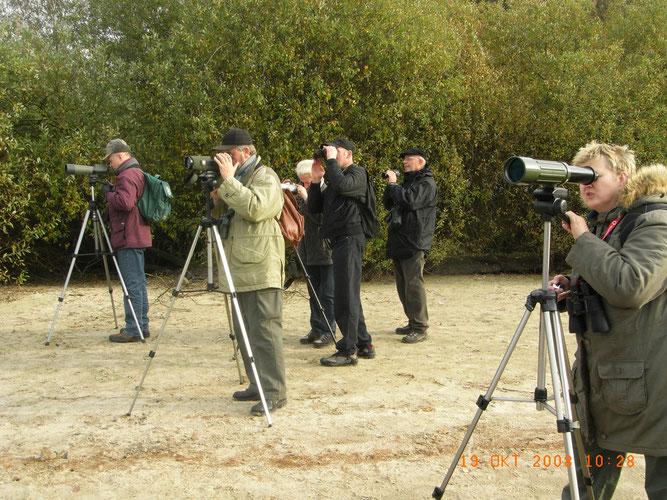 Hobby-Ornithologen der NABU-Ortsgruppe Cloppenburg bei der Wasser- und Watvogelzählung an der Thülsfelder Talsperre
