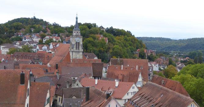 Tübinger Dächer mit Stiftskirche (Bild: Doris Brötz)