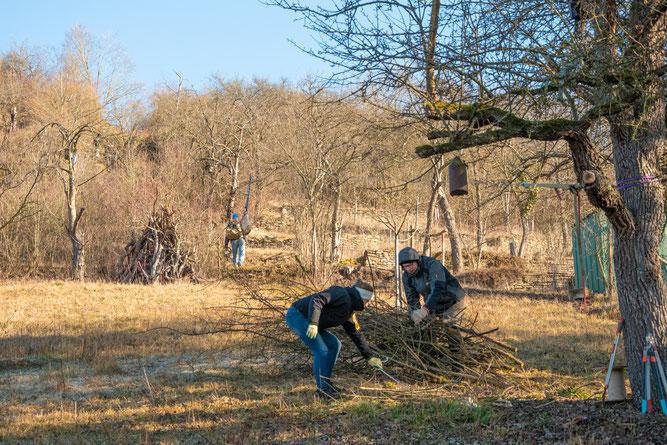 Biotoppflege-Aktion, Februar 2019 (Bild: Antje Trapp-Frank)