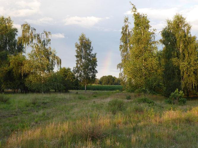 Zufahrt zur Fläche, Foto: NABU Sulingen, Udo Sakuth