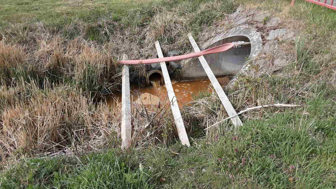 ©NABU NW; Auslass des braun verfärbten Speyerbachwassers in den Alleegraben