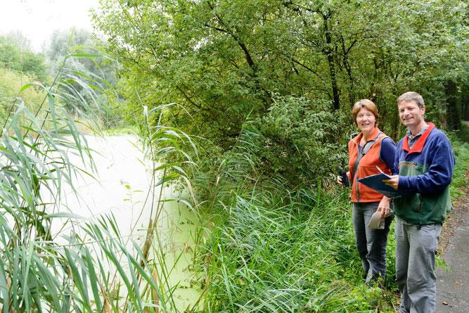 Schutzgebietsbetreuung am Weiherwaldsee, Foto: W. Geiselmann