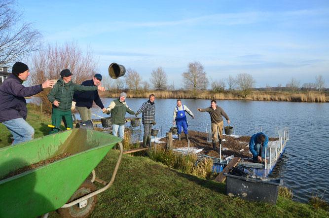 Ehrenamtliche NABU-Mitglieder installieren Flussseeschwalben-Brutfloß