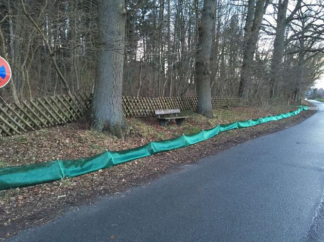 Zaun in Eyendorf - Krötenwanderung wurde uns von einer Anwohnerin gemeldet, die uns nun aktiv unterstützt