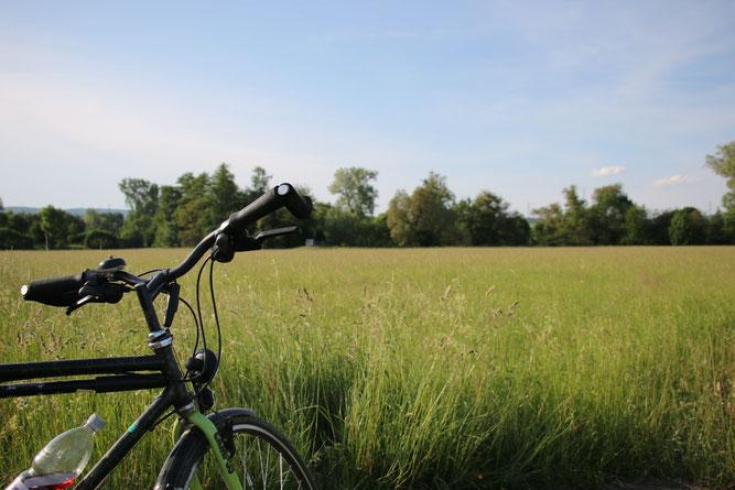 Mit dem Fahrrad unterwegs (Foto: B. Budig)