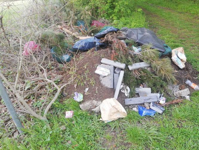 Illegale Müllablagerung am Heerter See, Foto: NABU Salzgitter