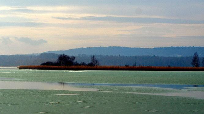 Blick auf den Heerter See im Winter. Foto: NABU/M.Gräwe