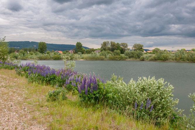 Helfen Sie mit, Naturparadiese zu schützen und zu erhalten! - Foto: Kathy Büscher