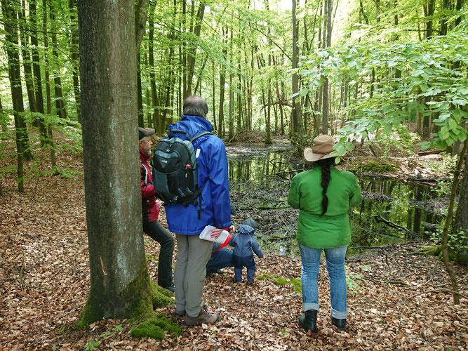 Foto: (K. Geilen) Geführte Moorwanderung in Kooperation mit dem NABU Haltern und den Naturparkführern Hohe Mark